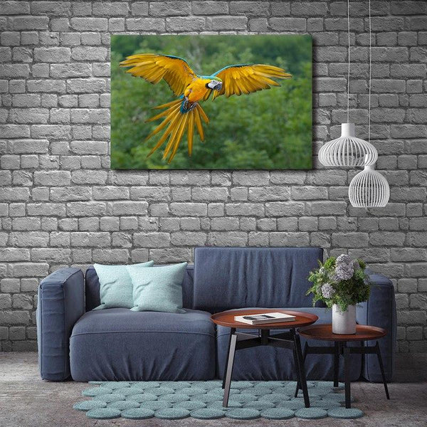 Asst Animals Elephant/Tiger/Lion/Horse/Macaw - Rolled Canvas Print Only (BXY293d)