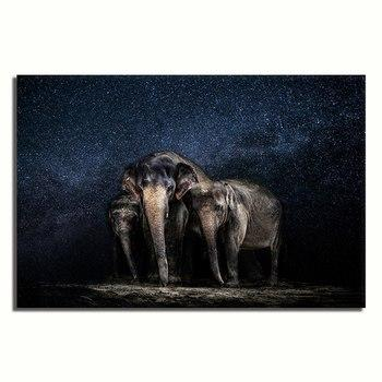 Asst Animals Elephant/Tiger/Lion/Horse/Macaw - Rolled Canvas Print Only (BXY293c)