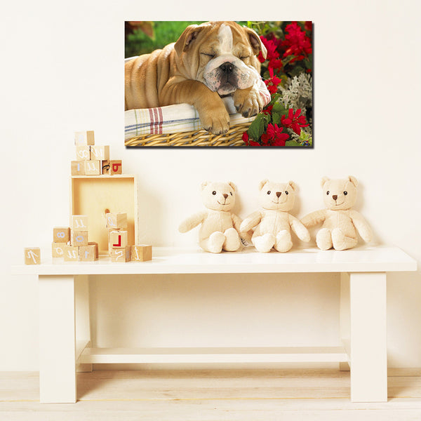 Cute Dog - Unframed Canvas Print (BXY280)