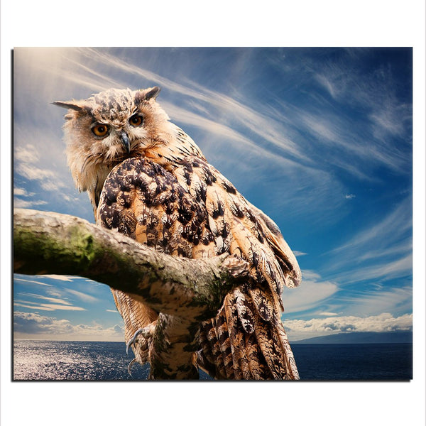 Owl - Unframed Canvas Print (BXY283)