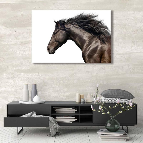 Asst Animal Portraits - Rolled Canvas Print Only (BXY234b)