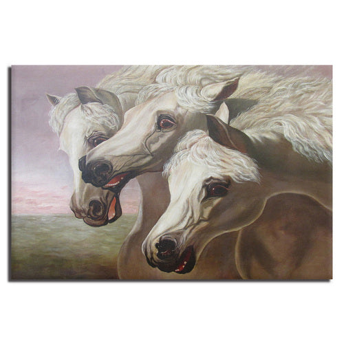 Asst Horses Galloping - Unframed Canvas Print (BXY243)