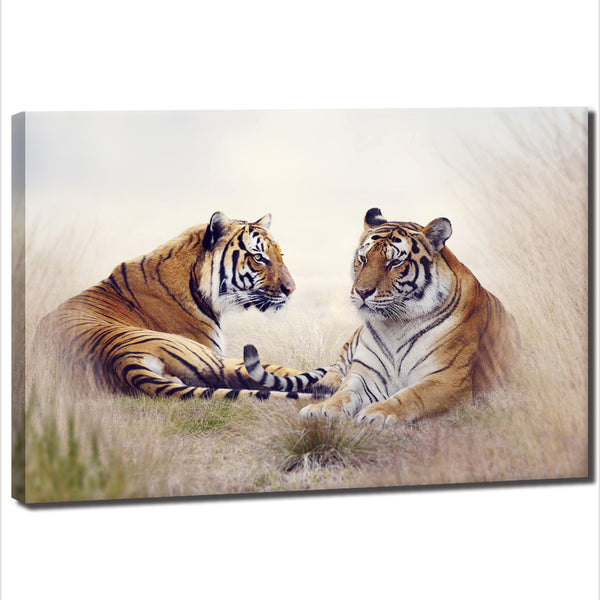 Tigers Together - Unframed Canvas Print (BXY320)