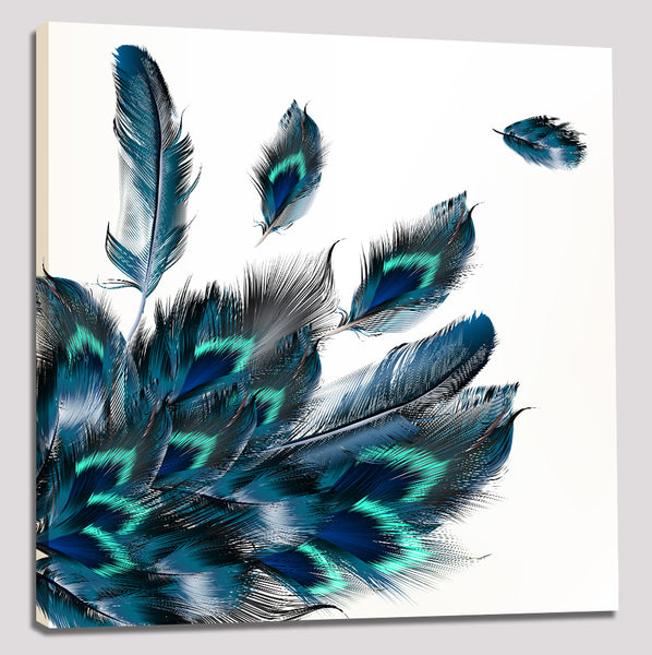 Feathers - Rolled Canvas Print Only (BXY265)