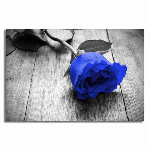 Asst Coloured Rose - Unframed Canvas Print (BXY217)