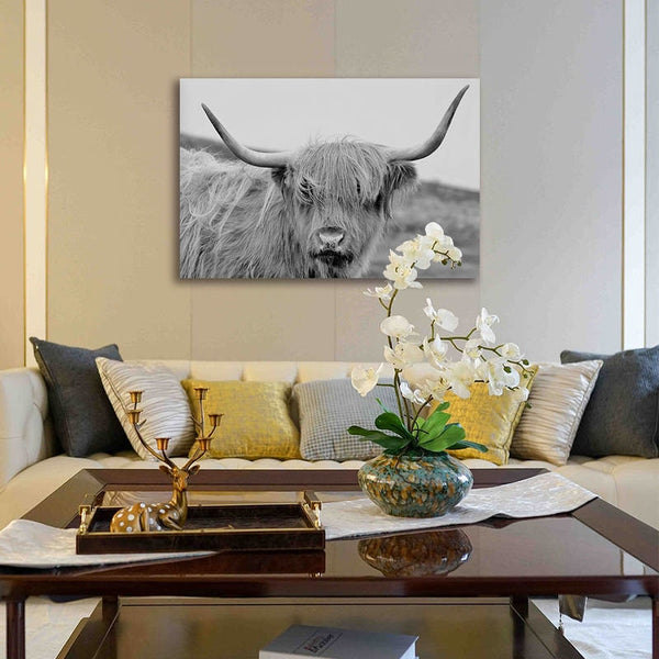 Asst Highland Cow Prints - Unframed Canvas Art (BXY200A)