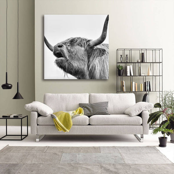 Asst Highland Cow/ Yak - Rolled Canvas Print Only (BXY305)