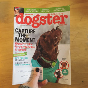 Pug Pint Glasses Featured in Dogster Magazine Holiday Gift Guide