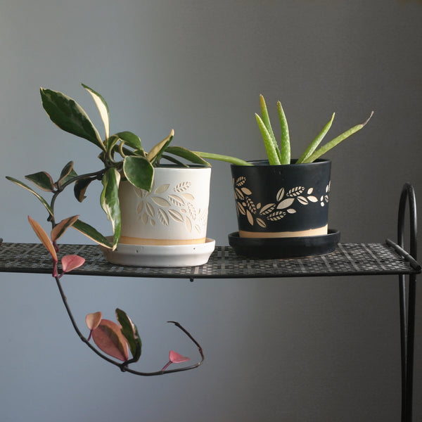 Houseplant pots with engraved leaves