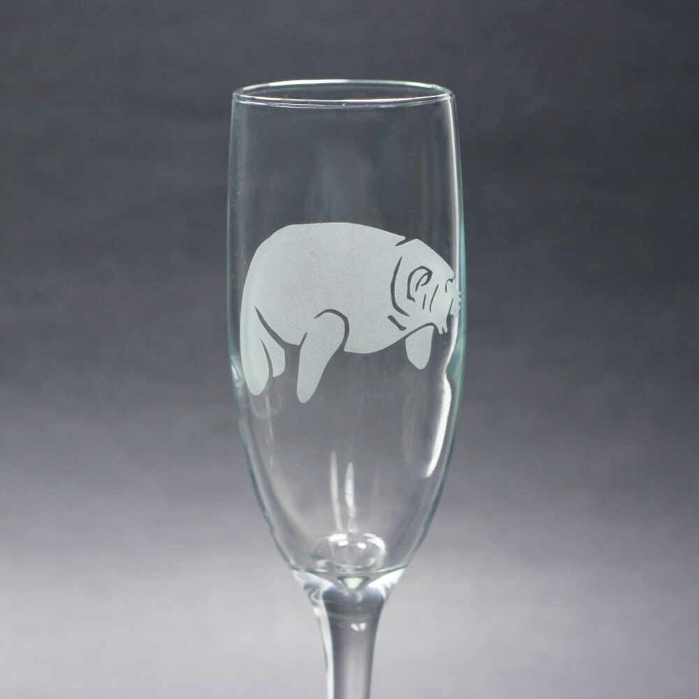 Manatee champagne flute etched by Bread and Badger