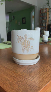 "5"" white sea turtle planter"