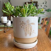 "5"" white sea turtle plant pot"
