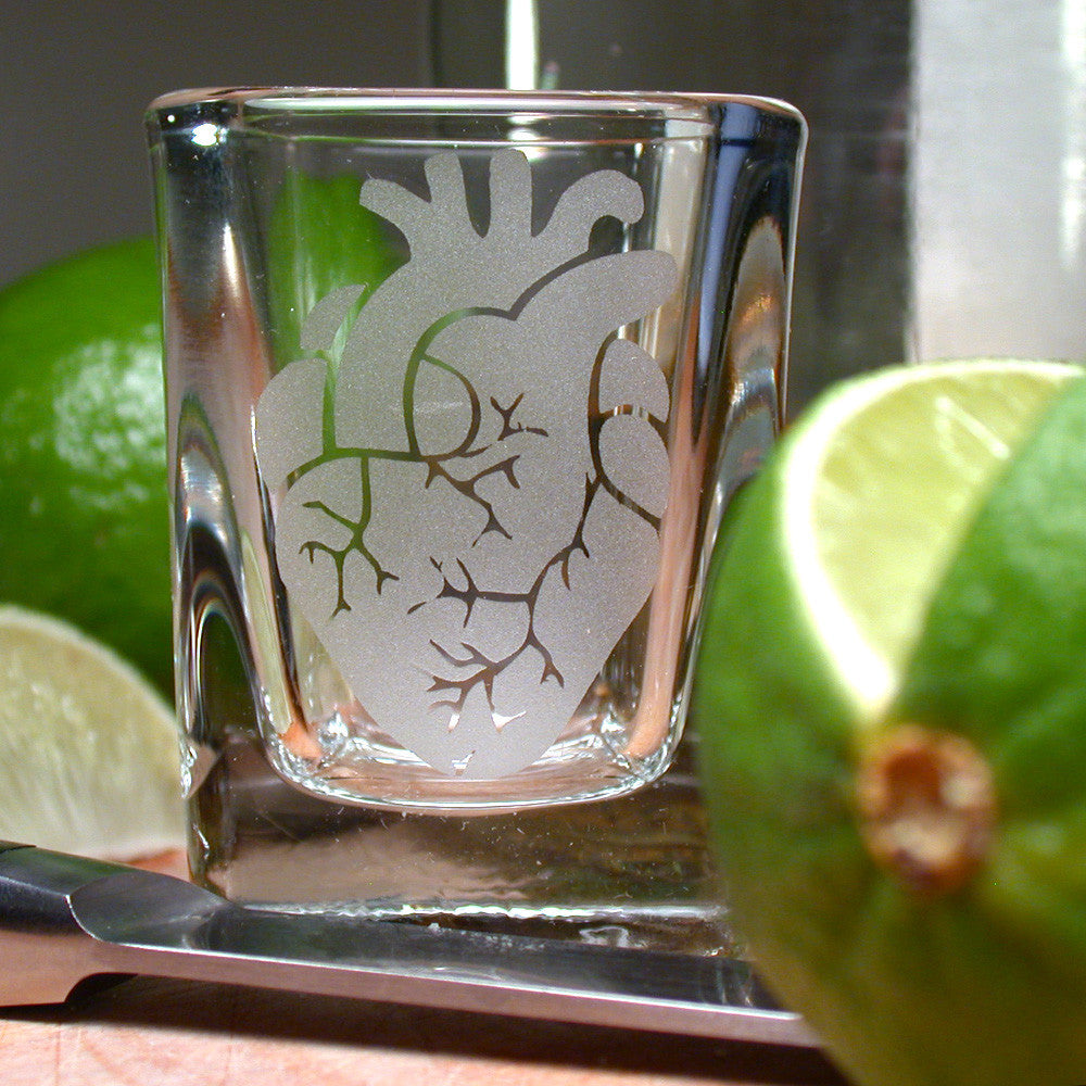 square anatomical heart shot glass
