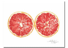 Niki Kingsmill Grapefruit Watercolour Print - 8x10 available from Room 2046 cafe shop studio Toronto Canada