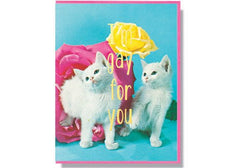 Smitten Kitten I'm Gay for You Card available from Room 2046 cafe shop studio Toronto Canada
