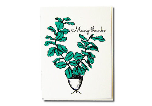 Flakes Paperie Potted Fig Thank You Card | Room 2046 Toronto Canada