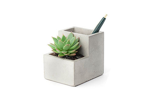 Kikkerland Concrete Desktop Planter - Small | Room 2046 Toronto Canada