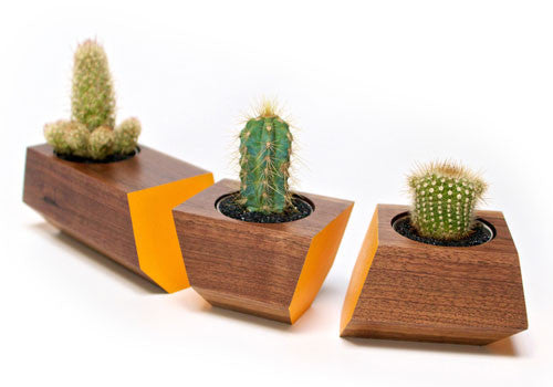 Boxcar Planter Set Walnut Orange