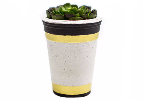 Room 2046 Party Concrete Planter - Gold & Black | Room 2046 Toronto Canada