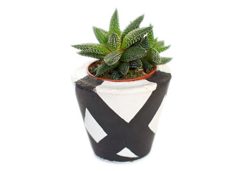 Room 2046 Pico Concrete Planter - Black Wire | Room 2046 Toronto Canada