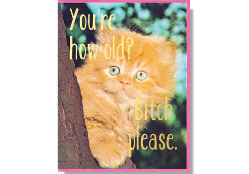 Smitten Kitten You're How Old Birthday Card