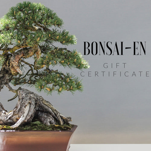 Bonsai-En Gift Certificate $10 - $100 - Bonsai-En