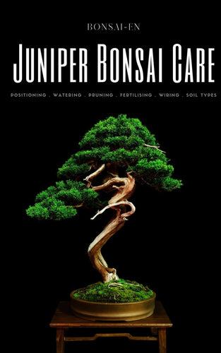 Juniper Bonsai Care eBook - Bonsai-En