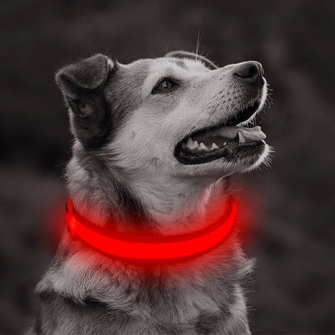 Safety doggie collar/Night time walks/lost dog find dog/anti-car accident-Nylon Material/Red - Safetydoggiecollars