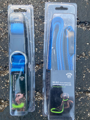 USB Rechargeable Safety dog Leash, Blue