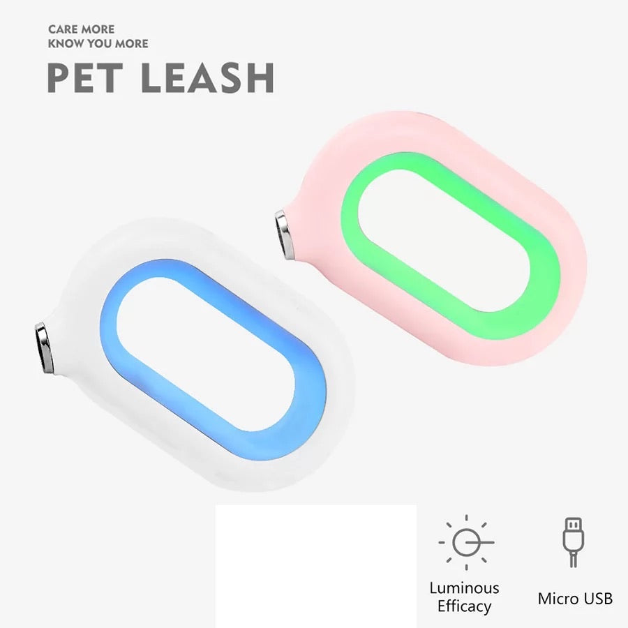 Multi-Color LED Safety Dog Leash, White