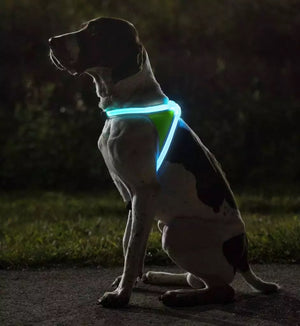 Reflective Led Dog Harness 0310, Multi-Color