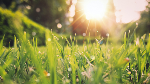 Spring time health tips for a better life from EverRelief