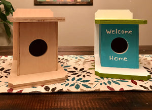 DIY Birdhouse Kit