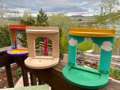 DIY Inside-View Bird Feeder Kit