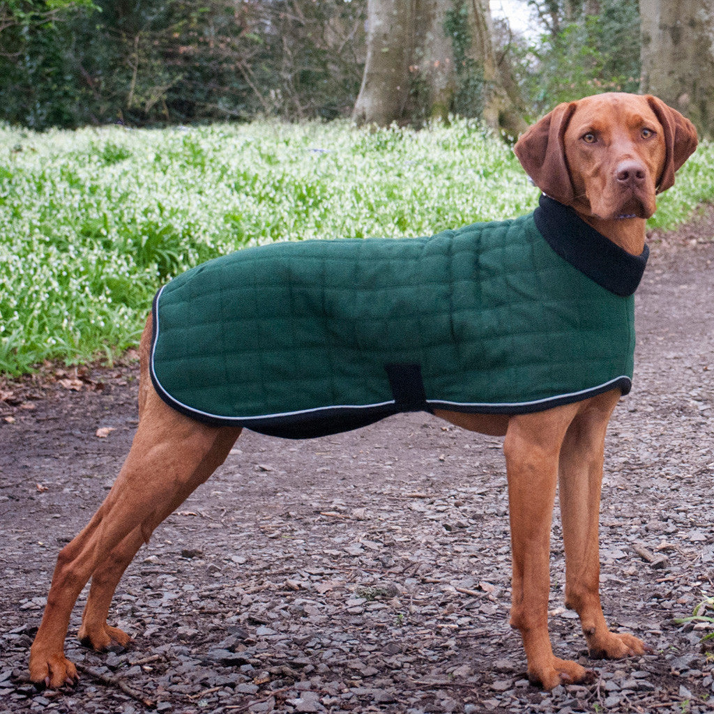 Therma-Dry Winter Dog Coat with Polo Neck