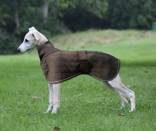Therma Dry Whippet Dog Coat Lansdown Country