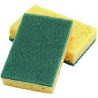 Large Sponge Scourer (Pack of 10)