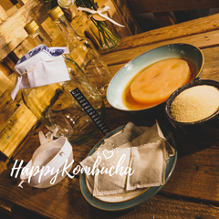 Kombucha Scoby and Kits