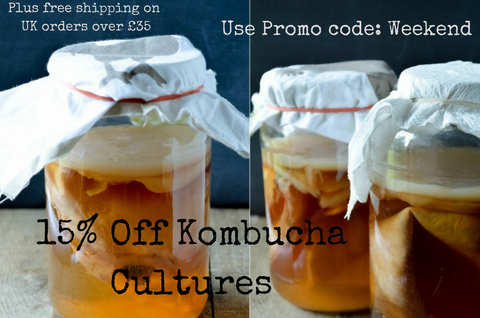 http://happykombucha.co.uk/collections/kombucha-scobies