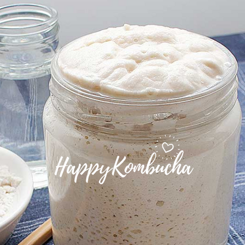 Sourdough starter made with organic flour by happykombucha