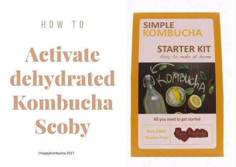 how to activate a dehydrated scoby