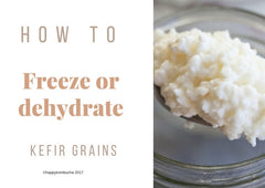 how to freeze or dehydrate milk kefir