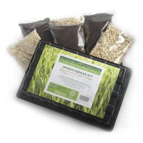 Aconbury Sprouts Organic Wheatgrass Growing Kit