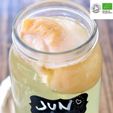 Certified Organic Jun scoby