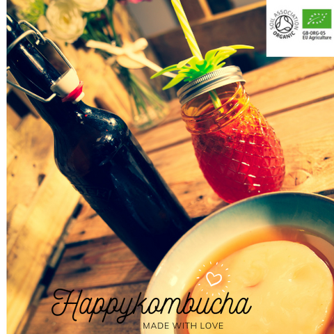 Organic Certified Heirloom Viennese Kombucha scoby, full of gut friendly living bio cultures.