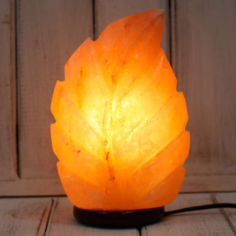 Leaf Shape salt lamp 2-3Kg lamp-slight seconds