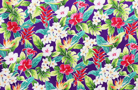 pink and white floral on purple