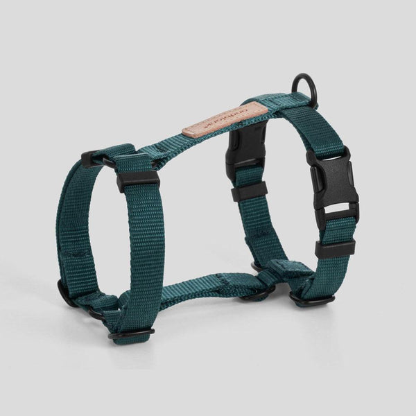 andblank Pet Harness - Green - CreatureLand