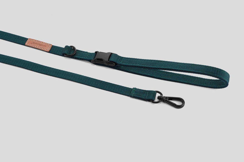 andblank Pet Leash - Green - CreatureLand