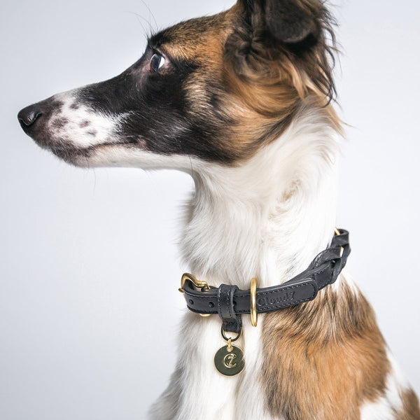 Cloud7 Dog Collar Hyde Park - Black - CreatureLand